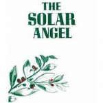 The Solar Angel by Torkom Saraydarian