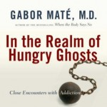 In the Realm of Hungry Ghosts: Close Encounters with Addiction by Gabor Maté, M.D.