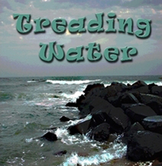 Treading Water by Noreen Braman
