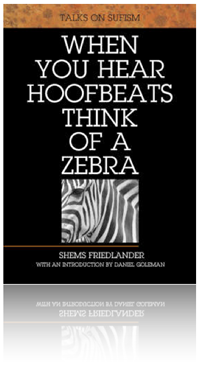 Book review when you hear hoofbeats think of a zebra the when you hear hoofbeats think of a zebra by shems friedlander fandeluxe Gallery