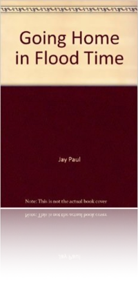Going Home in Flood Time by Jay Paul